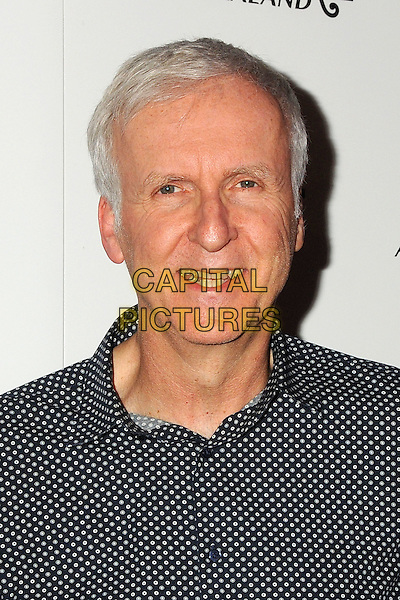 30 March 2016 - Los Angeles, California - James Cameron. &quot;The Dark Horse&quot; Los Angeles Premiere held at the Ace Hotel Theatre. <br /> CAP/ADM/BP<br /> &copy;BP/ADM/Capital Pictures