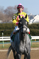 "Marilyn's Guy, with Chuck ""C. C."" Lopez aboard, win the Grade III Excelsior Stakes, for 3-year olds & up, 1 1/8 mile, on the inner dirt at Aqueduct.  Trainer Anthony Dutrow.  Owners Michael Dubb, Bethlehem Stables LLC and Gary Aisquith."