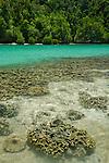 Reef and aquamarine bay, Erenang, Kaimana-area, Papua.