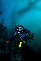 Dr. Sylvia Earle diving in Monterey Bay, California.