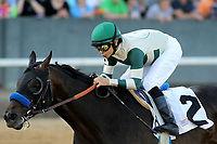 HOT SPRINGS, AR - MARCH 18: Mor Spirit #2, ridden by Mike Smith before crossing the finish line in the Essex Handicap race at Oaklawn Park on March 18, 2017 in Hot Springs, Arkansas. (Photo by Justin Manning/Eclipse Sportswire/Getty Images)