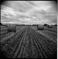 Hay, Occold, Suffolk | Black and White