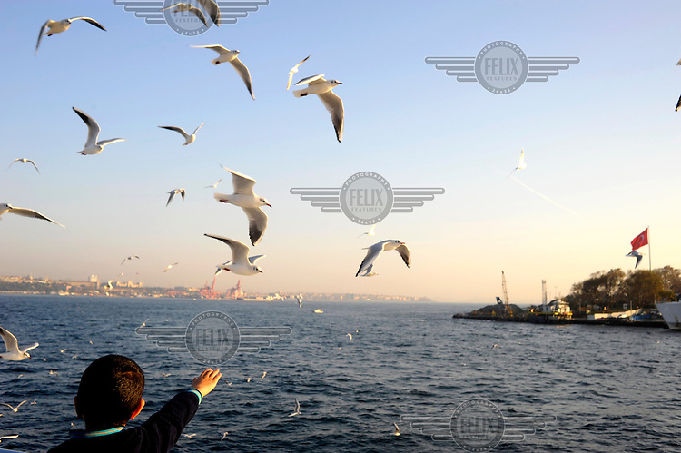 A child on the deck of a Bosphorus ferry reaches out towards seagulls flying beside the boat.