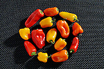 Small group of red, orange and yellow bell peppers on a textured black background with dramatic diagonal lighting. Copy space around group.