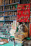 South America, Bolivia, La Paz. Dried llama fetuses and charms at  the Witch Doctor's Market of La Paz.