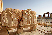Peristyle with carved relief, sanctuary of Bel Marduk, chief Mesopotamian deity, built 3rd century BC - 1st century AD, Palmyra, Syria Picture by Manuel Cohen