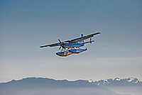 Seaplane, floatplane, coming in to land in Victoria Harbour Airport, British Columbia, Canada, with Olympic Mountains, Washington State, USA, on the horizon, 200809101282..Copyright Image from Victor Patterson, 54 Dorchester Park, Belfast, N Ireland, BT9 6RJ...Tel: +44 28 9066 1296.Mob: +44 7802 353836.Email: victorpatterson@mac.com..IMPORTANT: Go to www.victorpatterson.com and click on Terms & Conditions