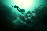Wreck of the HMCS Yukon