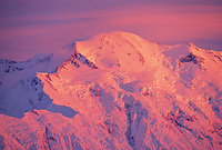Pink alpenglow on the north face of Mt. McKinley summit, Denali National Park, Alaska