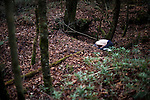 An unidentified man lies dead from what appears to be an overdose  in Aokigahara Jukai, better known as the Mt. Fuji suicide forest, which is located at the base of Japan's famed mountain west of Tokyo, Japan on Dec 1 2009...