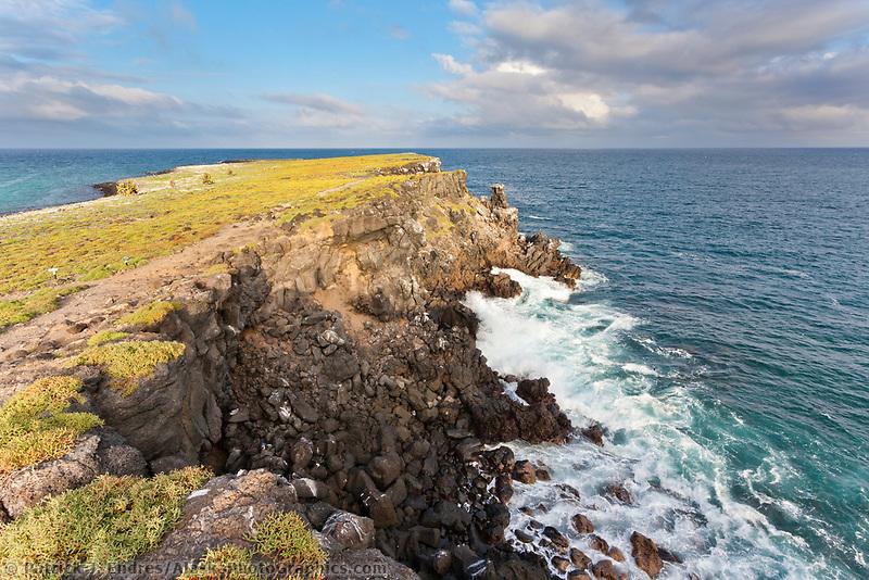 South Plaza Island, Galapagos Islands, Ecuador