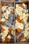 Chicks For Sale, Otovalo Market