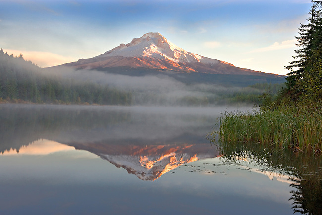 Mt Hood reflecting in Trillium Lake on misty morning, Oregon