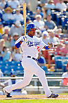 6 March 2006: Tony Abreu, infielder for the Los Angeles Dodgers, at bat during a Spring Training game against the Washington Nationals. The Nationals and Dodgers played to a scoreless tie at Holeman Stadium, in Vero Beach Florida...Mandatory Photo Credit: Ed Wolfstein..