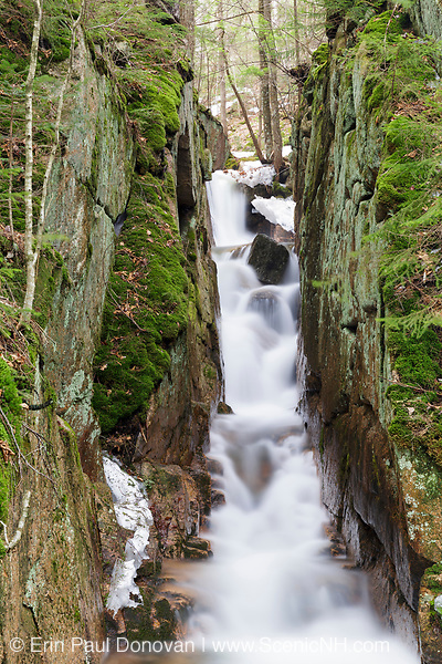 Small gorge along Cascade Brook in the Flume Gorge Scenic Area in Lincoln, New Hampshire USA during the spring months. This area is part of Franconia Notch State Park