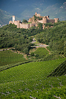 Bolzano, South Tyrol, June 2007. Thehills around Bolzano are home to most of the wine production in region of South Tyrol. South Tyrol used to be part of Austria until it became part of Italy after WWI. Photo by Frits Meyst/Adenture4ever.com