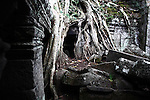 Tree roots and the rubble of a collapsing temple at Ta Prohm in Angkor Thom, Cambodia. June 7, 2013.
