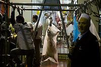 Muslims Slaughter Sheep for Aid El Kebir