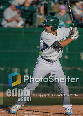 31 July 2016: Vermont Lake Monsters outfielder Tyler Ramirez in action against the Connecticut Tigers at Centennial Field in Burlington, Vermont. The Lake Monsters edged out the Tigers 4-3 in NY Penn League action.  Mandatory Credit: Ed Wolfstein Photo *** RAW (NEF) Image File Available ***