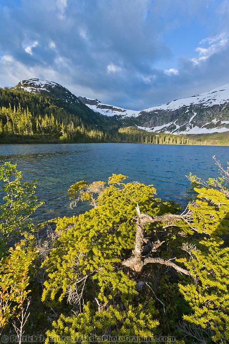 Upland lake near Cedar Bay, Prince William Sound, Chugach mountains, Alaska