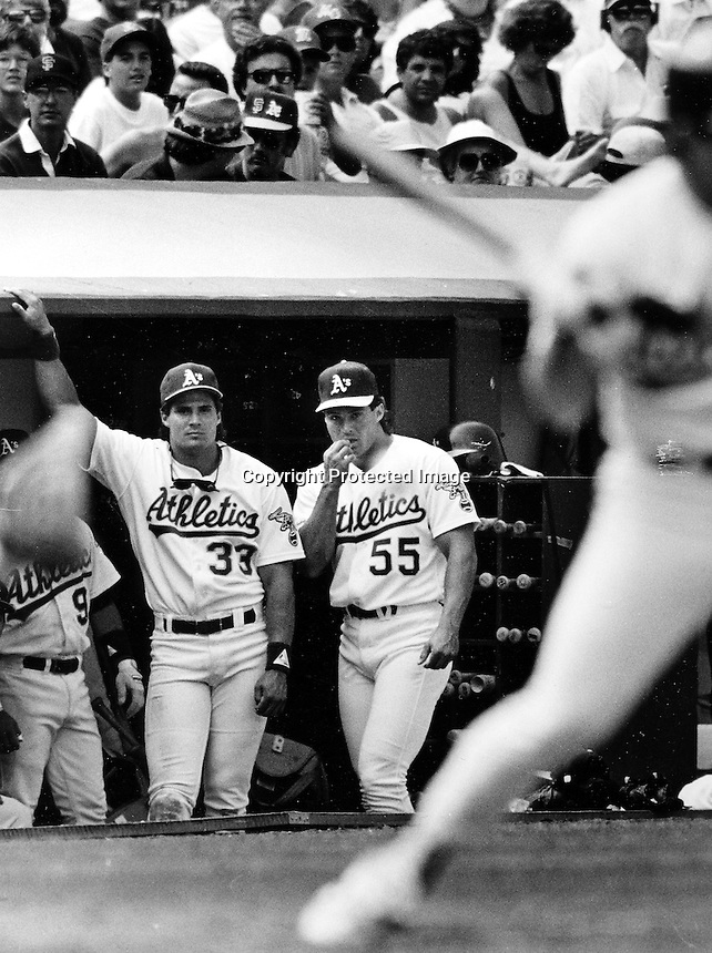 Jose and Ozzie Canseco in the A's dugout. (1990 photo by Ron Riesterer)