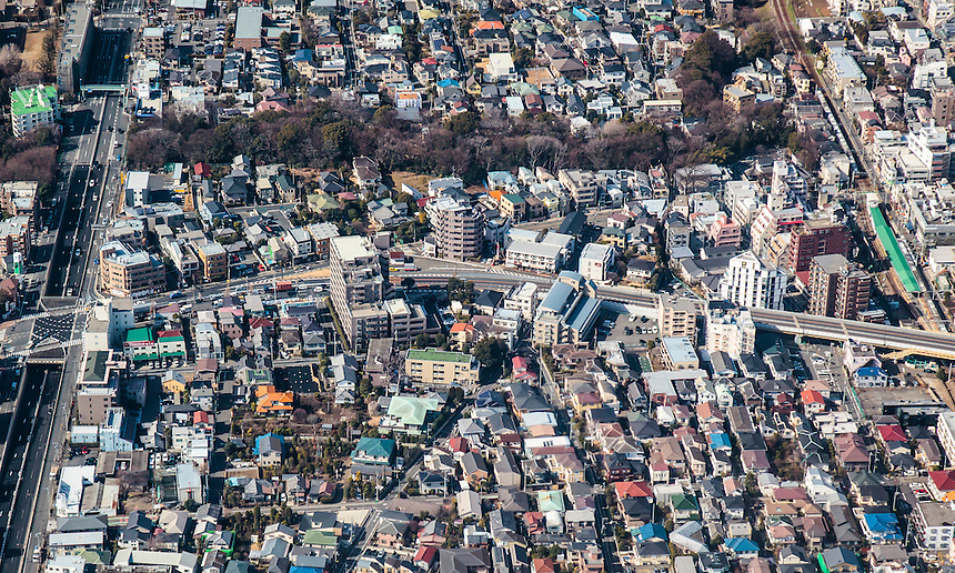 Todoroki district of Tokyo with Todoroki Valley tree line visible.