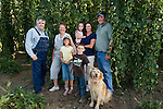 Hops in the Willamette Valley, Oregon