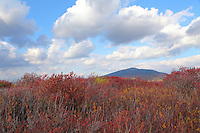 Mount Monadnock under fair skies in Autumn