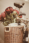 Red flowers in bicycle basket