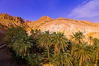 Tunisia-Sahara Desert