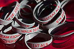 The walk to fight ALS at Payson Park in Portland, Maine on Saturday Sept. 10, 2011.