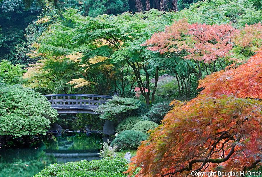 Bridge Over Pond Japanese Garden Douglas Orton Imaging