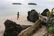 A child runs on the beach on Iolasa island, beside the trunks of fallen coconut palm trees, their roots exposed by the sea erosion of the land, with the two Huene Islands (Huene was split in two by the sea in the 1970's) in the background, on the Carterets Atoll, Papua New Guinea, on Tuesday, Dec. 12, 2006.  Rising sea levels have eroded much of the coastlines of the low lying Carteret islands (situated 80km from Bougainville island, in the South Pacific), and waves have crashed over the islands flooding and destroying what little crop gardens the islanders have. Food is in short supply, banana and swamp taro crops are failing due to the salt contamination of the land, and the islanders live on a meagre one meal per day diet of fish and coconut. There is talk by the Autonomous Region of Bougainville government to relocate the Carteret Islanders to Bougainville island, but this plan is stalled due to a lack of finances, resources, land and coordination.