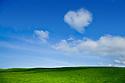 Love heart cloud and green field. Tasmania. Australia.