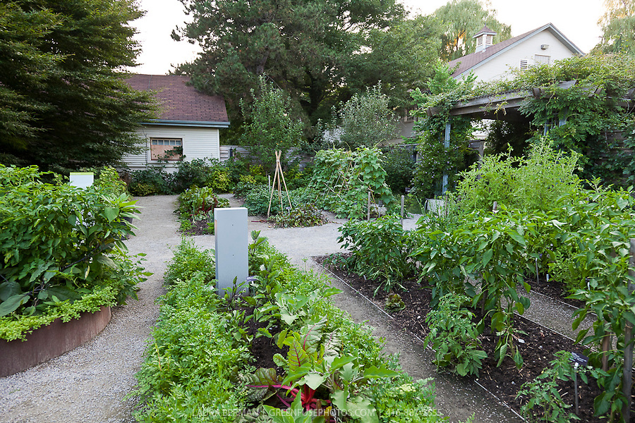 Impressive Kitchen Garden Potager 900 x 600 · 543 kB · jpeg