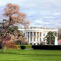 White House Washington DC