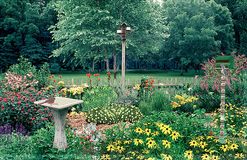 A garden for the birds - bird bath, birboxes and orchards