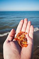 Hand holding amber found on beach with Baltic sea in background, Curonian Spit, Lithuania