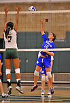28 October 2012: Yeshiva University Maccabee Jackie Berger, a Sophomore from Boca Raton, FL, in action against the Old Westbury Panthers at SUNY Old Westbury in Old Westbury, NY. The Panthers defeated the Maccabees 3-0 in NCAA women's volleyball play. Mandatory Credit: Ed Wolfstein Photo