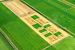Nederland, Drenthe, Valthermond, 05-08-2014; graanoogst op proefvelden voor gewassen in de veenkolonien. <br /> Grain harvest in a peat landscape, East Netherlands (near German border). Test fields for crops.<br /> luchtfoto (toeslag op standard tarieven);<br /> aerial photo (additional fee required);<br /> copyright foto/photo Siebe Swart