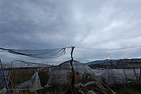 Abandoned greenhouses near Nahara, rural Fukushima, Japan. Tuesday April 30th 2013