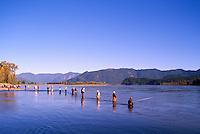 Sport Fishermen fishing for Sockeye Salmon in the Fraser River, Fraser Valley, BC, British Columbia, Canada