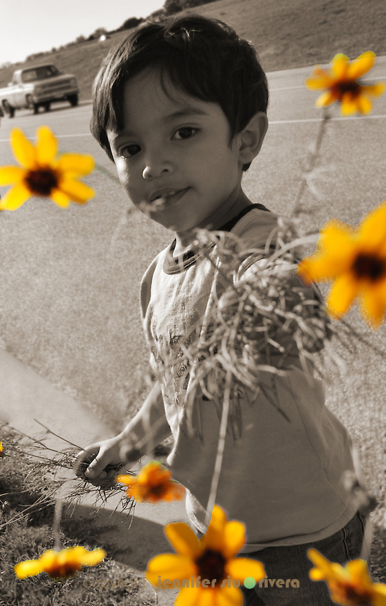 toddler portrait - flowers for mama