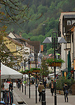 Shops and houses in Schramberg, Black forest, Germany.
