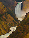 Jim Urquhart/Straylighteffect.com The Lower Yellowstone Falls on the Yellowstone River in Yellowstone National Park. Jim Urquhart/Straylighteffect.com