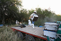 The evening before leaving for the islands, Carlos goes to get his hives two hours from Victoria, on a field belonging to a childhood friend, a cattle raiser.