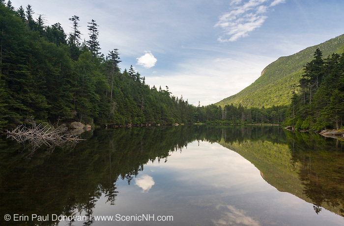 Greeley Ponds Scenic Area - Upper Greeley Pond in the White Mountains, New Hampshire USA.