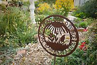 Creating World Peace sign in Tammi Hartung garden