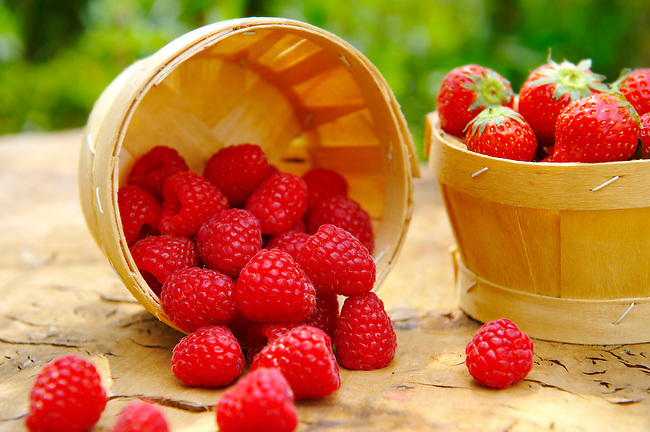 picture of raspberry