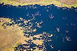 Ord River Delta, Western Australia